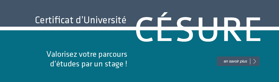 "Certificat d'Université ""Césure"""